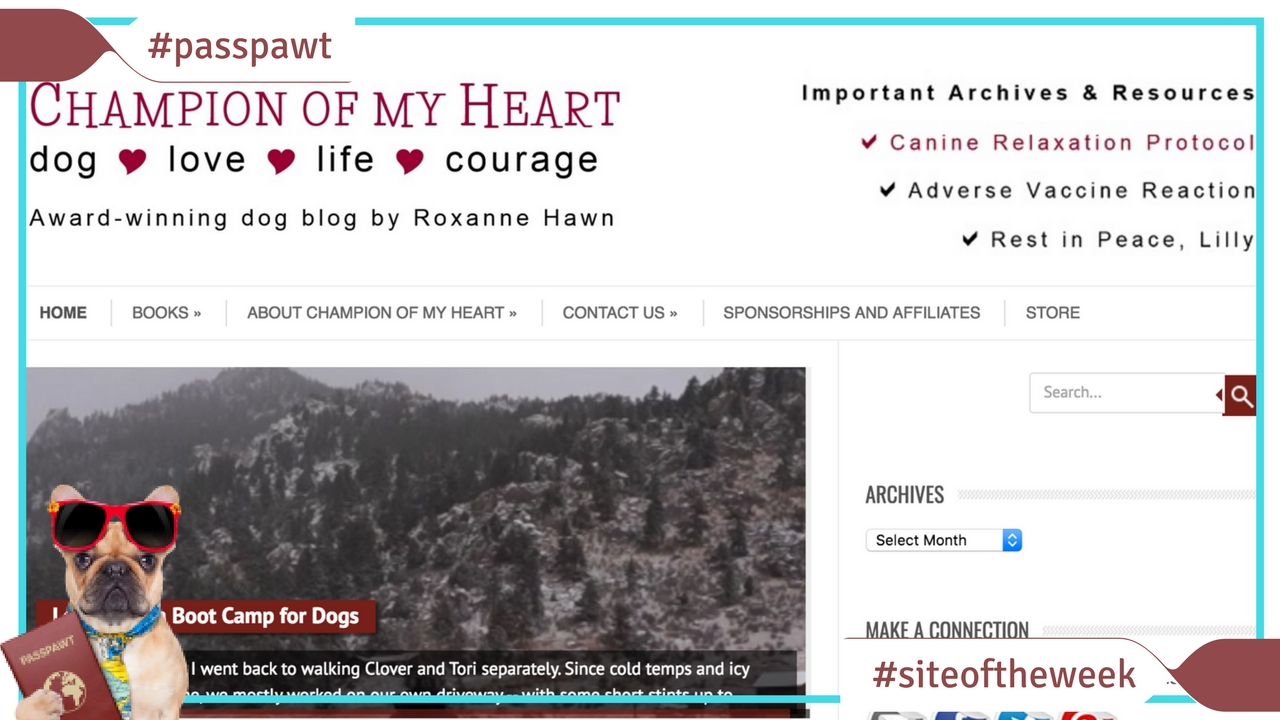 All Things Canine – Dog Website Of The Week – Champion Of My Heart