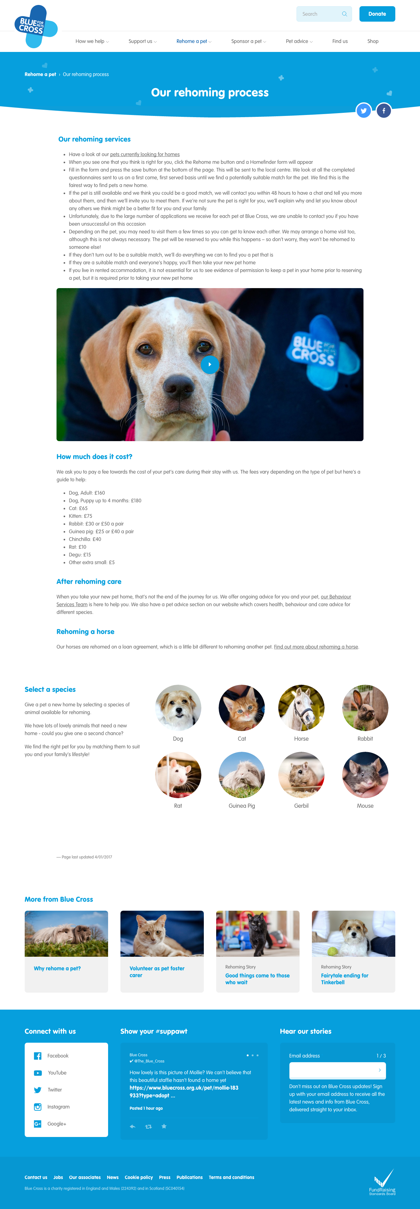 All Things Canine – Dog Website Of The Week – Blue Cross
