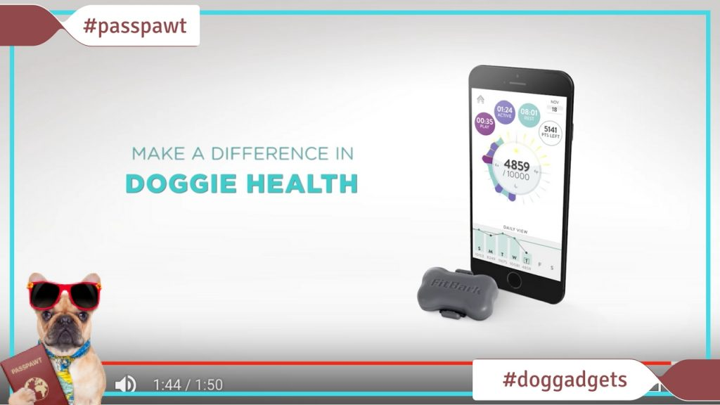 Dogs Pet Shop - Dog Gadgets - Fitbark - The Fitbit for dogs
