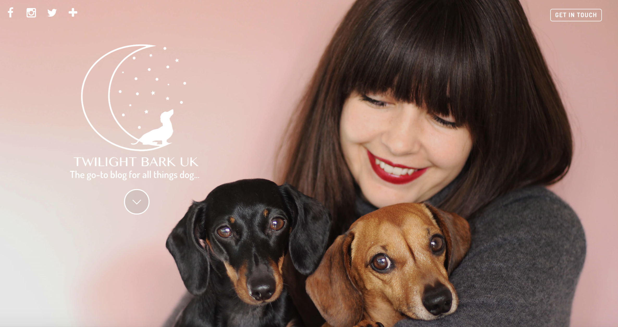 All Things Canine – Dog Website Of The Week – Twilight Bark UK