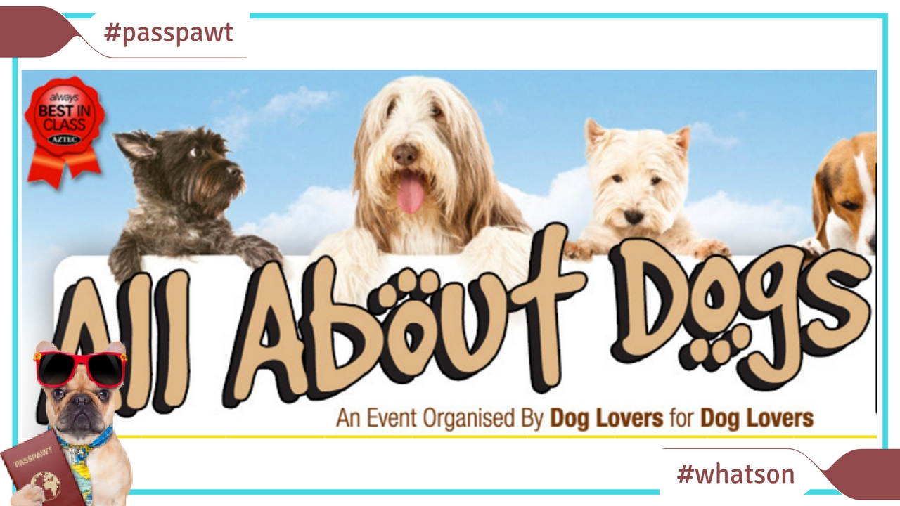 What's On In Dogland – News – 8th and9th of April – All About Dogs