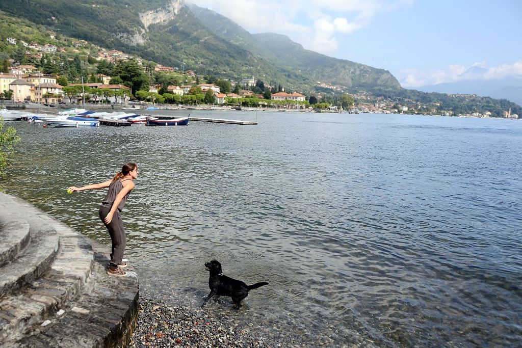 dog friendly villas in lake como