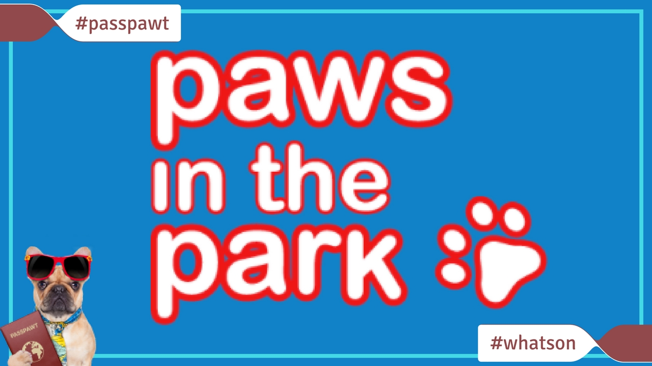 What's On In Dogland – News – Paws in the Park Spring Show
