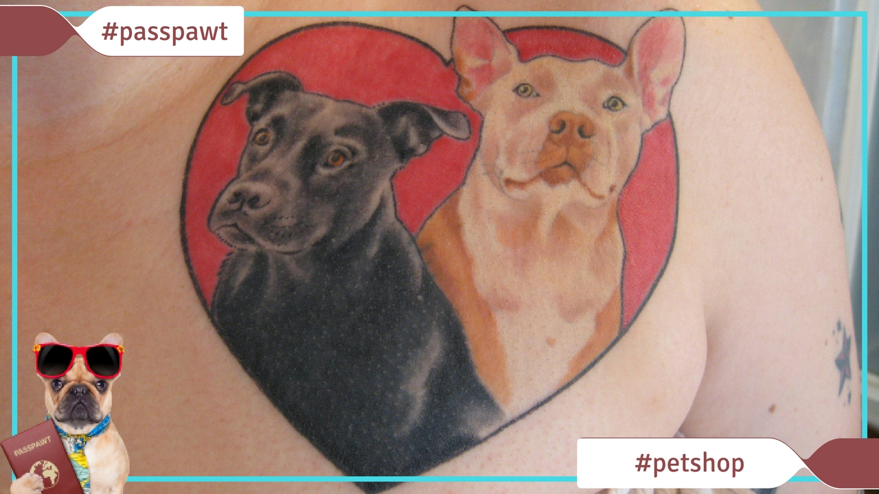 Dogs Pet Shop –  – Dog Tattoos