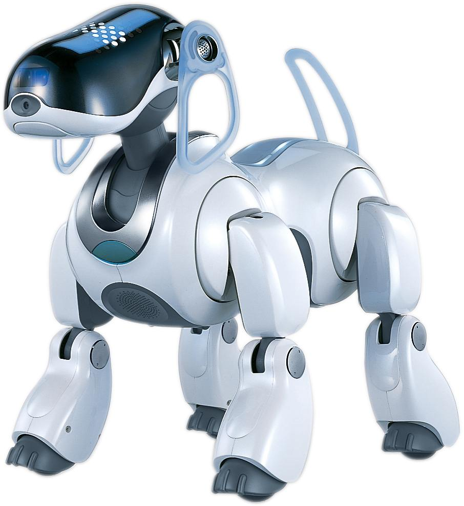 Should we ditch Rover and get a virtual-robot pet?