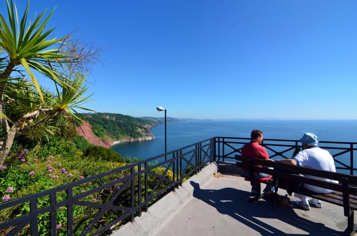 dog friendly Babbacombe