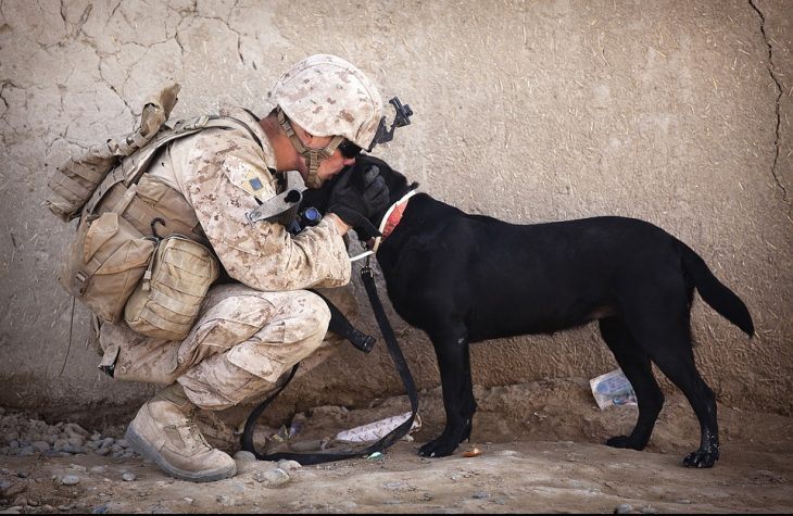 Soldier Talking to Dog